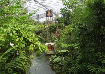 Tropical Greenhouse Wildlands Adventure Zoo Emmen
