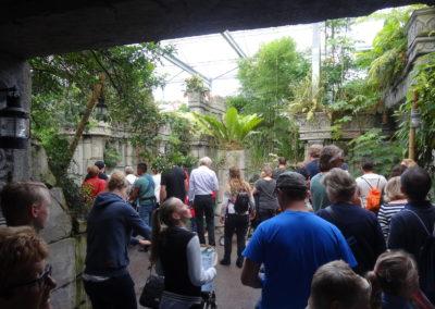 Butterfly and Crocodile greenhouseWildlands Adventure Zoo Emmen