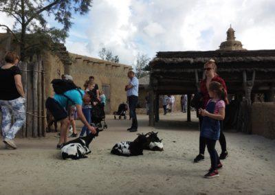 Dogon petting zoo