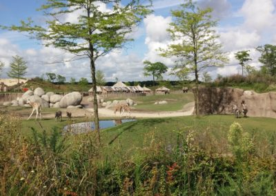 Savanna Wildlands Adventure Zoo Emmen