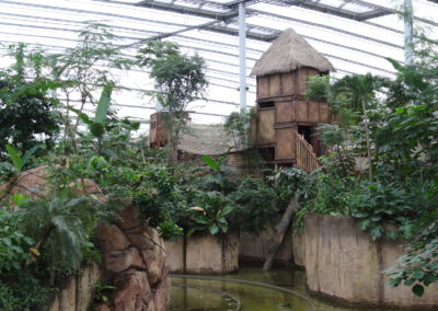 Playground in tropical greenhouse