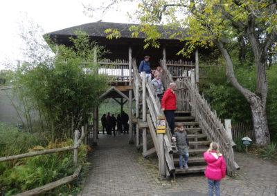Lion enclosure Emmen Zoo