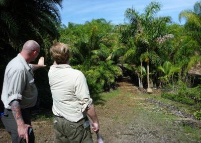 Field research - Costa Rica