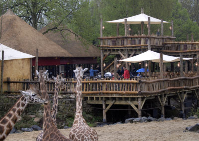 Savanna Terrace Zoo Emmen